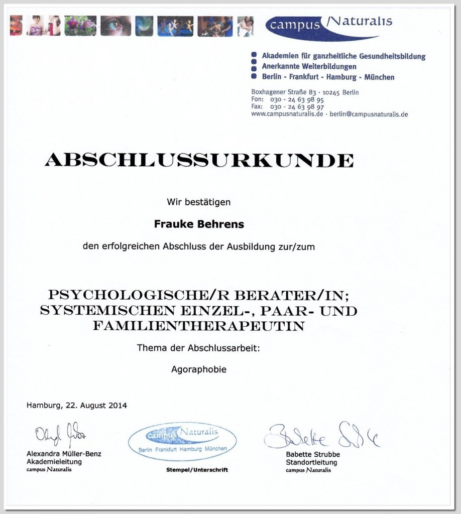 Abschlussurkunde-Systemische-Therapie-01